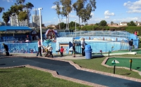 Bommers, Irvine - Bumper Boats