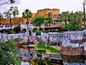 Disney World - Epcot - Animal Kingdom - Africa - Wikipedia by Jennifer Lynn