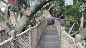 Disneyland  - Tarzan Treehouse