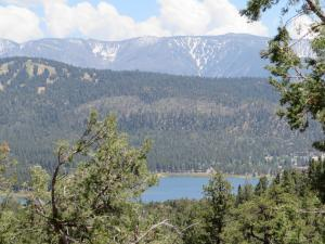 Big Bear Lake - Cougar Crest Trail