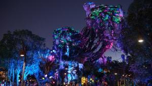Disney World - Nighttime landscape at Pandora - Wikipedia by Jedi94