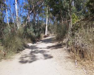 Nora Kuttner Trail - Fullerton 2