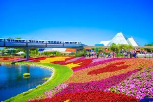 Disney World Orlando - Pixabay by eduneri