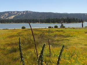 Big Bear Lake - Alpine pedal path trail
