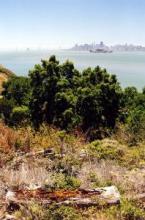 San Francisco - Angel Island - from Wikipedia